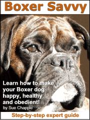 """""""Why Training Your Boxer Dog Is A BIG DEAL!...  Whatever your Boxer problems, discover, risk-free, how to turn your Boxer into a healthy, happy and obedient dog!"""""""
