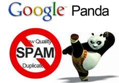 Get to know about the vital update in Internet Marketing  : Google Panda