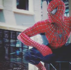Amazing Spiderman, Spiderman Noir, Spiderman 2002, Spiderman Suits, Black Spiderman, Spiderman Marvel, Ms Marvel, Captain Marvel, Spiderman Sam Raimi