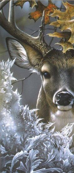 The Majestic Deer* This is SO gorgeous!* Stranger In Town ~ Whitetail deer painting by Jerry Gadamus ~ Walk gently upon our Earth Mother, Gaia, keeping in mind that She is forever receiving Her dead and giving birth. Animals And Pets, Cute Animals, Wild Animals, Deer Art, Animal Paintings, Deer Paintings, Wildlife Paintings, Nature Paintings, Wildlife Art