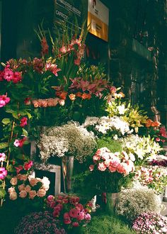 Don't know where this is, but it looks like a flower stall we happened upon in Barcelona!!!