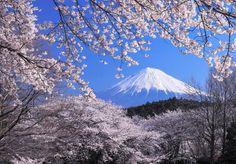 Tokyo city picture 6 #Tokyo #Tokyocity #Tokyotower #shibuya #osaka #lifestyle #beautiful #love #beauty #shinjuku