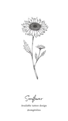 Sunflower – Tattoo Design – Illustration by Liza Sie - diy tattoo images Sunflower Drawing, Sunflower Tattoos, Sunflower Tattoo Design, Flower Tattoo Designs, Sunflower Tattoo Small, Tattoo Ideas Flower, Watercolor Sunflower Tattoo, Sunflower Tattoo Meaning, White Sunflower