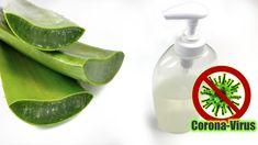 Jak vyrobit Desinfekční gel na ruce z aloe vera a ethanolu (technického lihu) Aloe Vera, Diy Face Mask, Health Fitness, Soap, Personal Care, Bottle, Beauty, Diys, Couture