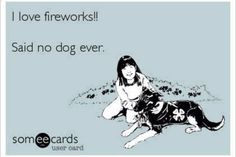 Ban Fireworks. My dog is terrified by them and he has a heart murmur so I am always frightened that he will have a heart attack.