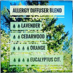 """Love allergy season..."" said NO ONE EVER!!! Is it raining pollen where you live? It's crazy here in Courtenay BC! Fight the pollen and fill your home with an aroma that will not make your eyes water...👍 . . #57aromas #greenvalleyaromatherapy #downtowncourtenay #comoxvalley #aromatherapy #yqq #shoplocal #Canada #ProudlyCanadian #essentialoil #lavender #allergydiffuserblend #therapeuticblends #massage #hydrosol #diffusers #basecream #handandbodylotion #organic #moisturising #soap…"