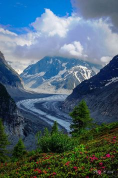 ~~Glacier Mere @ Mont Blank, France by Ping...~~