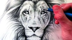 How to Draw a Lion is de video van YouTube die ik enorm veel heb gebruikt, ik probeerde mijn tekening er zo veel mogelijk op te laten lijken soms heb ik dingen wel wat anders gedaan dan het er als het filmpje deed omdat ik mooier vond. Wat ik het mooist van mijn tekening vind is toch wel de neus omdat ik die het meest erop leek lijken.