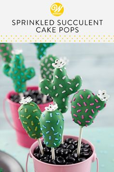 Create a tasty garden of Eatin' with these Sprinkled Succulent Cake Pops. Made using our tasty Basic Cake Pop Recipe, as well as Dark Green Candy Melts candy, these cake pops can be shaped to look like all your favorite succulents and cacti. Candy Melts, Jelly Beans, Birthday Cake Pops, Birthday Sweets, Fiesta Cake, Blackberry Cake, Buckwheat Cake, Cactus Cake, Basic Cake