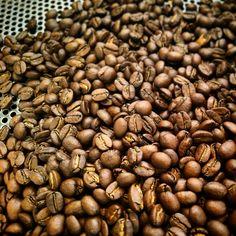 本日の一杯 【パナマ】 中煎りコーヒー。 焙煎度合いは比較的浅目、口当たりは柔らかく、酸味もキレが良く上質な酸味なので、とても飲みやすいコーヒーです。