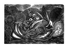 George Tute. Nature Morte II. 2012. (wood engraving)
