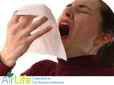 #airlife #aire #previsión #virus #hongos #bacterias #esporas #purificación purificación de aire Airlife te dice.  ¿qué es una rinitis alérgica? es una manifestación alérgica del sistema respiratorio superior. Las alergias respiratorias afectan de forma importante la calidad de vida relacionada con la salud, por eso es importante conocer los principales factores que…