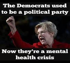 I agree!! The liberal democrats have become mentally unhinged. Warped and demented in their thinking. Totally blinded by evil & lies!