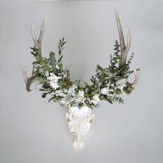 Mule Deer Skull with Flower Crown by Meghan LaCroix