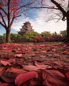 """🌎 🌎 🌎 Earthpix 🌍🌏🌎 (@earthpix) no Instagram: """"Change of seasons at Hiroshima Castle 🇯🇵 Photo by @nielstichelaar"""""""