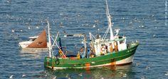 Bateau de pêche côtière