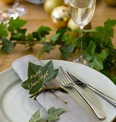 Tree ivy, plain and simple, is the indispensable greenery for making quick festive effects. Cut long, leafy lengths and use them to trail down the centre of the Christmas table, to garland around the backs of chairs, or wired in short bunches onto one long length of garden twine to create a garland.: