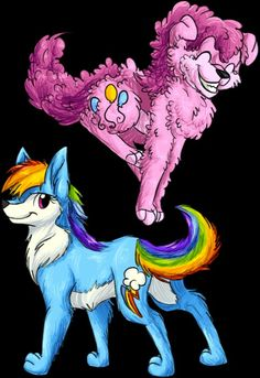 Pinkie Pie and Rainbow Dash as canines
