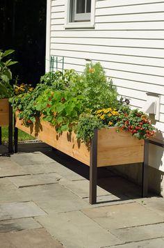 Planter Boxes: Standing Height Cedar Raised Garden   Gardener's Supply