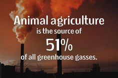 @Greenpeace @GeorgeMonbiot no because Greenpeace shuns this