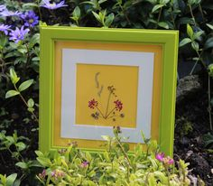 Irish Wild Flower Picture ~ Connemara Pressed Flower Wall Art ~Real Flowers ~ A Gift from Ireland ~ Guaranteed Irish ~ by TheOwlTreeIreland on Etsy Real Flowers, Wild Flowers, Unique Gifts, Handmade Gifts, Handmade Cards, Irish Symbols, Owl Tree, Connemara, Simple Words