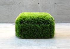 Grass ottoman....just what i needed.