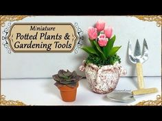 Miniature Potted Plants & Gardening Tools