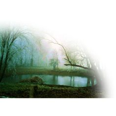 Ette's magic pond - CSI for Poly ❤ liked on Polyvore featuring backgrounds, tubes, water, nature, landscape, effects, fillers and scenery