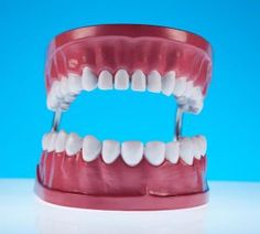 The Dangers of Swollen or Bleeding Gums Smile Dental, Cavities, Teeth, Deer Park, Concept, Bright, Colorful, Blog, Tooth
