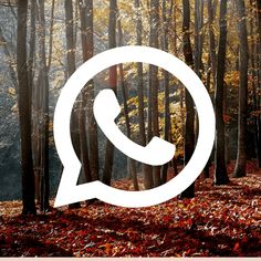 Iphone Wallpaper App, Iphone Wallpaper Tumblr Aesthetic, Fall Wallpaper, Wallpaper Backgrounds, Wallpapers, Icones Do Iphone, Cute App, Iphone App Design, Ios App Icon