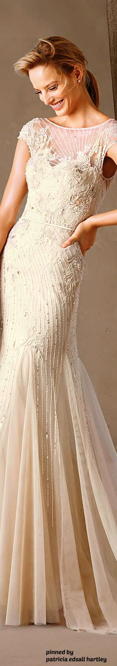 Pronovias presents the Pronovias Collection of wedding and cocktail dresses. Evening Dresses For Weddings, Evening Gowns, Wedding Gowns, Gowns Of Elegance, Elegant Gowns, Glamorous Wedding, Beautiful Gowns, Beautiful Things, Formal Gowns