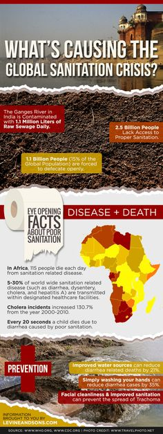 An informative infographic shedding light on the facts, causes and potential methods of prevention regarding the global sanitation crisis.