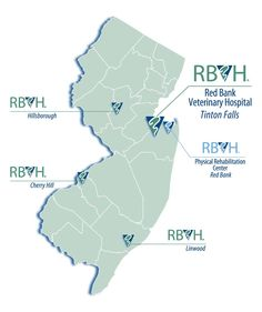 Red Bank Veterinary Hospital Locations Throughout New Jersey