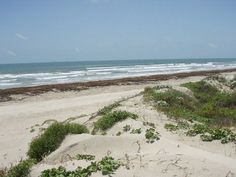 Port Aransas condo rental - Port A Beach - Love to watch the waves from the sand dunes