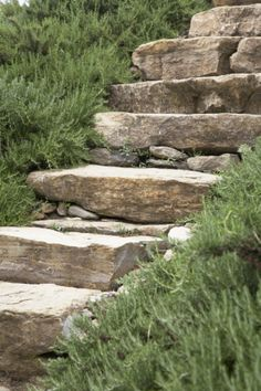 Stone Garden Steps Shannon Meier Check This Out