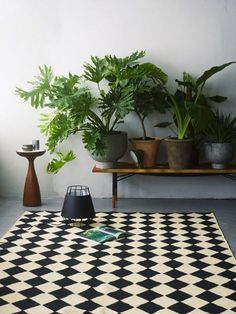 2015 Trends: Greens ‹ Bungalow5