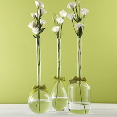 Two's Company Sleek And Chic Vase Trio with Sage Green Ribbon Includes 3 Shapes: Tear Drop, Round, Jug - Hand-Blown Glass – Modish Store