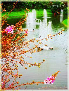 Queen SiriKij Park