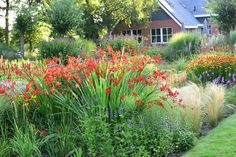 LOVE TO HAVE A GARDEN LIKE THIS....