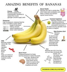 Amazing Health Benefits of Bananas ✔ Strengthening the body's circulatory system ✔ Overcoming depression and increasing happiness ✔ Restoring and normalizing regular bowel functions ✔ Improving mood and reducing PMS symptoms ✔ Stabilizing and regulating blood glucose levels ✔ Improving alertness ✔ Helping in smoking cessation ✔ Relieving anemia ✔ Providing energy