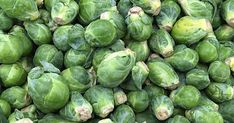 Easily grow Brussels sprouts at home | Gardener