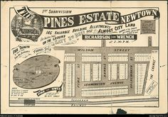 Richardson & Wrench. The Pines Estate, Newtown [cartographic material] : 1st subdivision, 146 valuable building allotments : for auction sale on the ground, Saty 3rd Decr. 1887. National Library of Australia: http://nla.gov.au/nla.map-lfsp1916