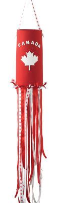 use a red-painted toilet paper tube instead of homemade foam - Quick, Easy, Cheap and Free DIY Crafts Canada Day Party, Canada Day 150, Happy Canada Day, Foam Crafts, Diy Arts And Crafts, Diy Crafts, Canada Day Windsock, Crafts For Seniors, Crafts For Kids