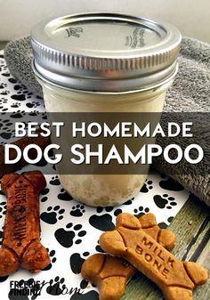 Best Homemade Dog Shampoo: All Natural Oatmeal Dog Shampoo
