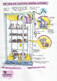 Enter the DIY off-grid mushroom fruiting house - for creating a humid forest simulation chamber, to grow LOTS of mushrooms right on your back porch. Growing Mushrooms At Home, Garden Mushrooms, Edible Mushrooms, Stuffed Mushrooms, Fungi, Mushroom Cultivation, Grow Room, Shower Screen, Off The Grid