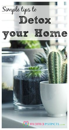 Simple Tips to Detox your Home – Mama Instincts