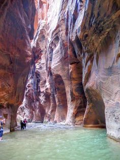 A hike through The Narrows requires hiking in the Virgin River. You must get your feet wet since there is no trail. Most people choose to start their hike from the Temple of Sinawava via the Riverside Walk and then walk upstream before turning around and hiking back down to the Temple of Sinawava.
