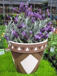 Use craft paint to make a unique design on terra cotta pots