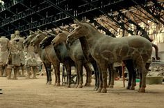 terracotta warriors and horses - Google Search
