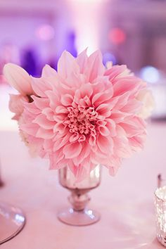 Pink Wedding // Photo by : http://troygrover.com